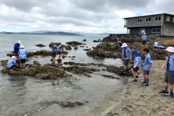 STEM Beach inquiry- Photo credits Lisa Allen